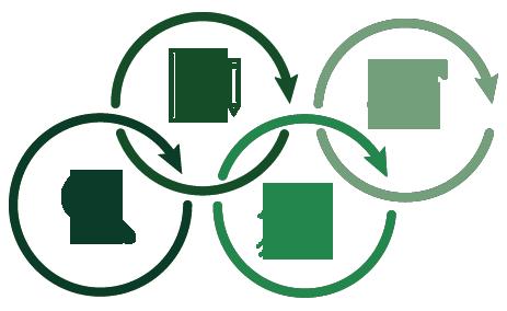 Arte com 4 ícones envoltos por círculos interligados, que representam um processo. Os ícones aparecem na seguinte ordem: lupa, folha de papel com lâmpada desenhada dentro e um lápis ao lado, foguete voando para cima e um gráfico crescente.