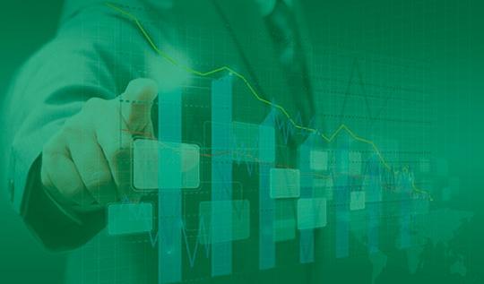 Gestão de Desempenho - Monitoramento de desempenho e resultado, através de um sistema, que identifica os pontos fortes e oportunidades de melhoria.